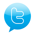 burbuja-de-informacion-twitter-popup-icono-8998-256